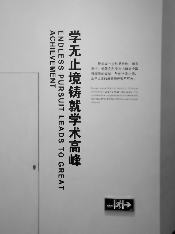 180112.Shanghai.Great_achievment.ernestoXmueller.com.IMG_BIG_SIZE_180111_043533.FINAL